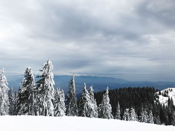 Snow Winter Cold Temperature Weather Nature Beauty In Nature Tranquility Tranquil Scene Scenics Mountain Sky Cloud - Sky White Color Day No People Outdoors Tree Frozen Landscape Snowcapped Mountain