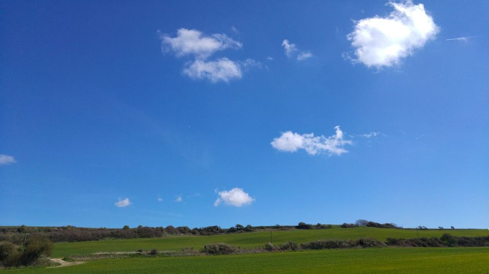 Blue Blue Sky Cloud Sky Sky And Clouds Fields Green Grass Countryside Isle Of Wight  Natural Beauty Outdoors No People Beauty In Nature Rural Scene Agriculture Growth Scenics Day Cloud - Sky Nature Field Negative Space Advertising Space EyeEmBestPics