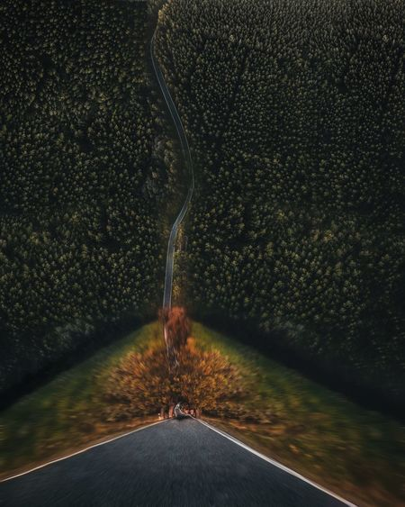 Digital composite of empty road amidst trees in forest
