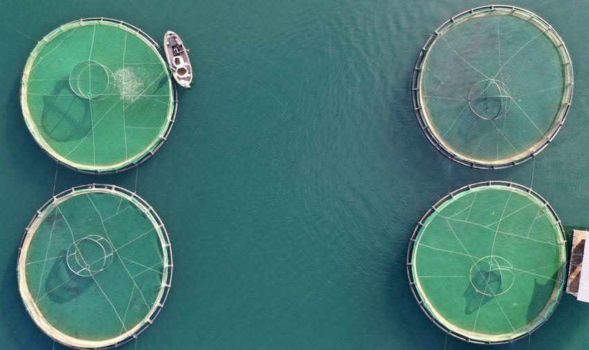 High angle view of water fisheries