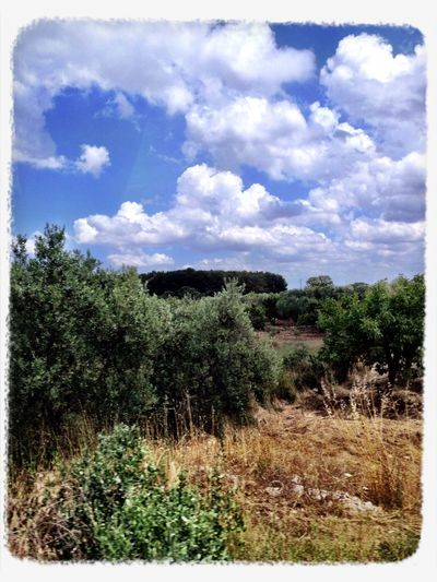 Clouds And Sky Parcodella Murgia