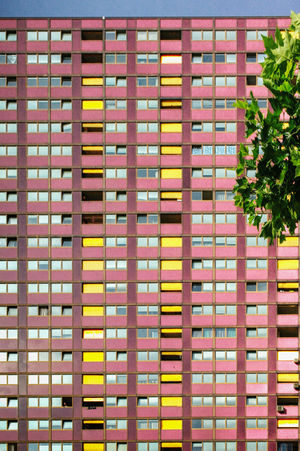 Orange Purple Orange Color Pink Orange Color Pink Color Red Color Sunny Day Sky Switzerland Zürich Tree Architecture Building Building Exterior Built Structure Pattern Plant Skyscraper Spreitenbach The Architect - 2018 EyeEm Awards EyeEmNewHere No People Day City Outdoors Apartment Office Building Exterior Plant #urbanana: The Urban Playground Summer In The City A New Perspective On Life