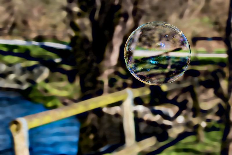 """Non importa quello che stai guardando, ma quello che riesci a vedere."" -Henry David Thoreau Fraesploele Bubblusoap Manipolation Bolledisapone EyeEm Selects Sphere Reflection Focus On Foreground No People Disco Ball Close-up Tree Bubble"