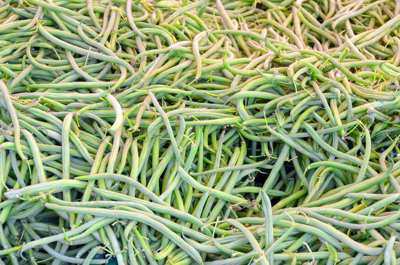 Abundance Backgrounds Bean Close-up Day Food Food And Drink Freshness Full Frame Green Bean Green Color Growth Healthy Eating High Angle View Market No People Plant Still Life Vegetable Wellbeing