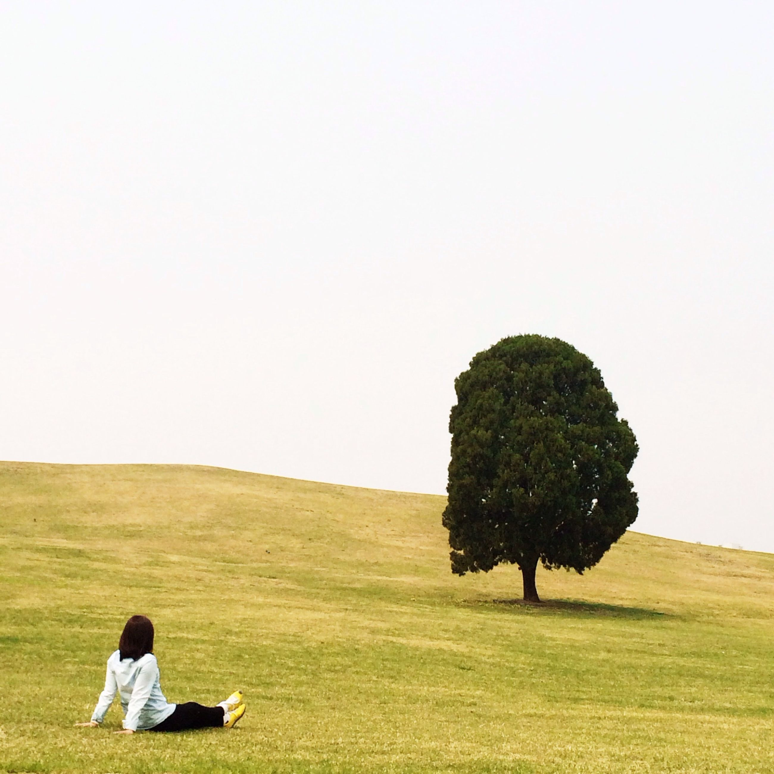 lifestyles, grass, men, leisure activity, landscape, field, clear sky, copy space, rear view, person, tranquility, tree, full length, tranquil scene, nature, standing, grassy