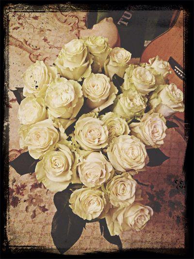 Flowers Ros 🌹 Rosé