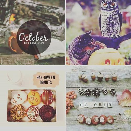 Hello October! 10th Favmonth Halloween Igers Picoftheday Beginnings Pleasebenice ♎ 🍃🍂🍁💚