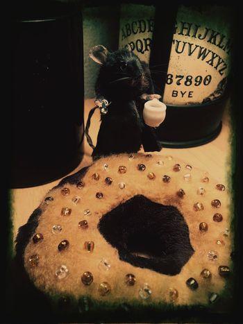 Mouse Taxidermy Coffee Donut Ouija Board  Art