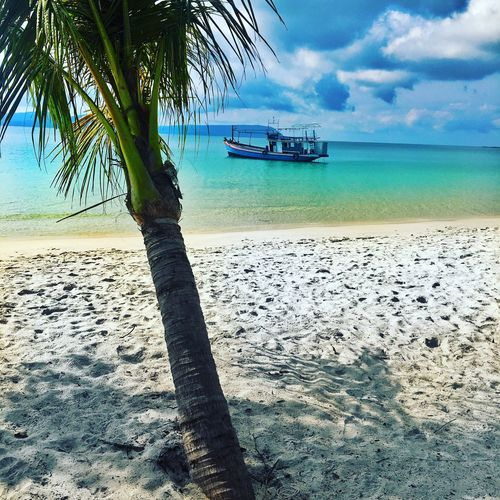 Living that island life in Koh Rong... Beach Sea Water Nature Sand Palm Tree Tranquil Scene Shore