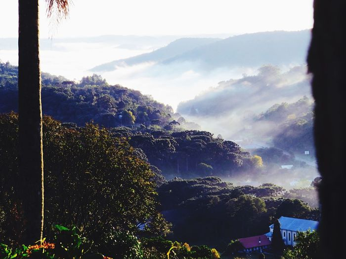 Nice view Check This Out Nova Petrópolis EyeEm Best Shots Nature
