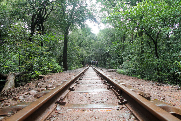 Greenery Keep Traveling Long Way From Home Monsoon Railway Railway Track Toy Train Toy Train Track Way Ahead