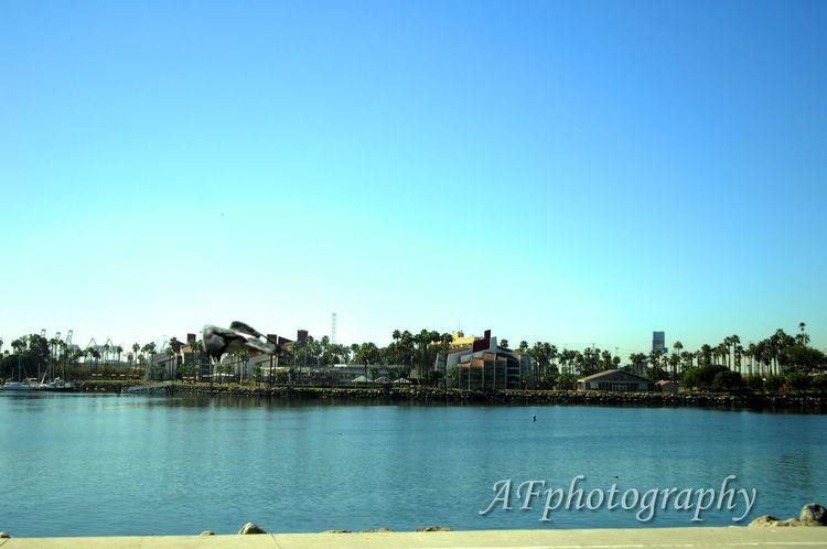 Long Beach California LBC Longbeach #california Pike Port Photography