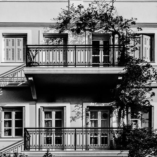 Two floors, two balconies, one flower Building Exterior Architecture Window Balcony Tree Residential Building Branch Blackandwhite Global Photographers Alliance Global Photographer-Collection Global Photographer Works Exhibition