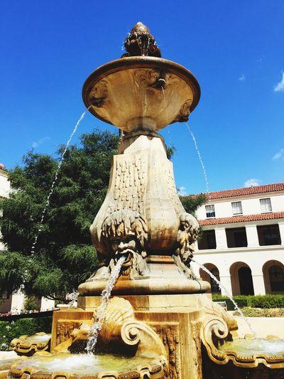 Waters running. City Hall. Perusing Pasadena.