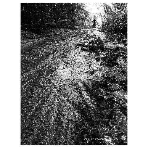 Il mio giro in mtb del 1 maggio. Caserta, per Canaloni e Cess track. Igerscaserta Igerscampania Igersnapoli Igersitalia MTB All -mountain Fango Pozzanghera Sentieri Blackandwhitephotography Bw_photooftheday Bws_worldwide Bnw_universe Bnw_captures Bwstyles_gf Bwoftheday Bnw_demand Igersworldwide Ic_captures_bw Jj_blackwhite Monochromeart GoodFellas_IMP . Biancoenero Bw Bn bw_world fiaf_instagram blacknwhite_perfection bnwlife_member paulistanobw