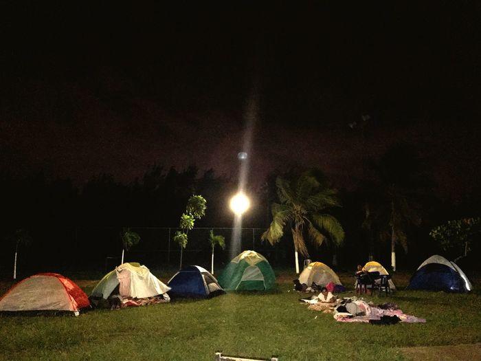 Summer camp Night Tent Illuminated Nature Tree Sky Camping
