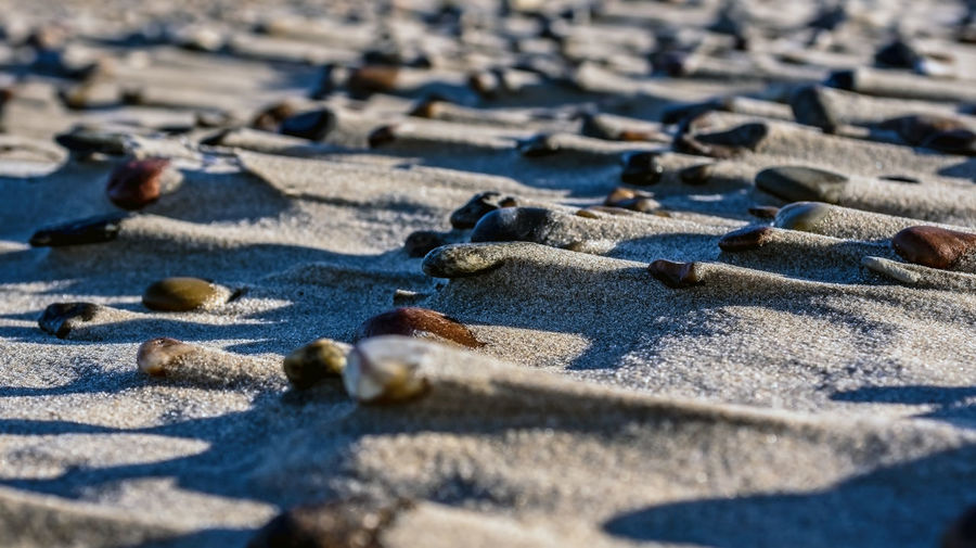 Close-up of pebbles on sand