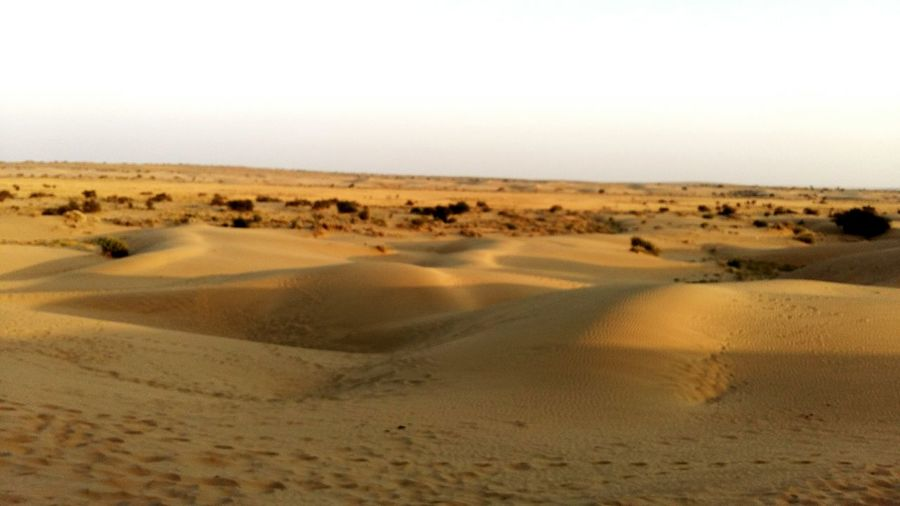 Desert No People Nature Arid Climate Sand Beauty In Nature Rajasthan Jaipur Rajasthan Beauty