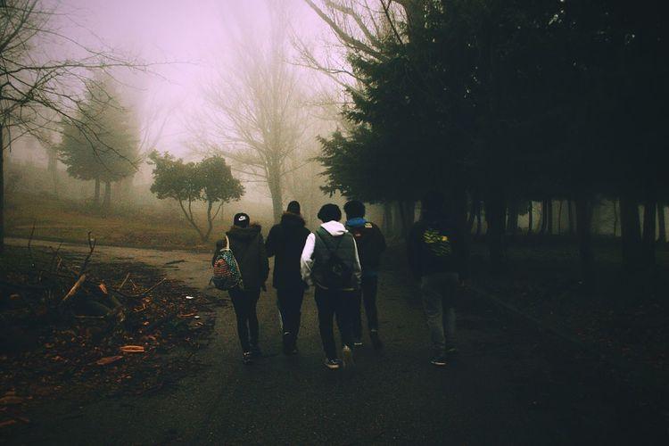 Rain Nature Crew Black Fog Fog Cold