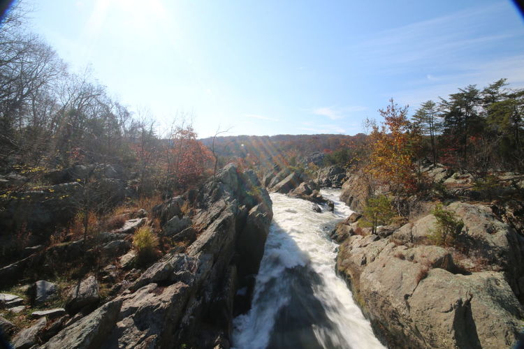 Fall Foilage Great Falls Great Falls National Park Great Falls Tavern Maryland National Park Park Potomac Potomac River PotomacMD River Washington Washington, D. C. Water Nature Nature_collection