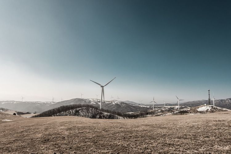 Wind turbines on field at eco green campus against clear sky
