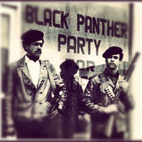 The60s Blackpanther Fightthepower