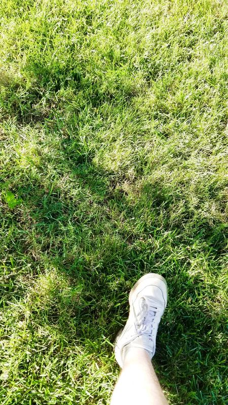 Summer Days, green grass Color Palette Colour Of Life Grass No Filter That's Me Relaxing Summer Foot Leg Shoe Out Of The Box