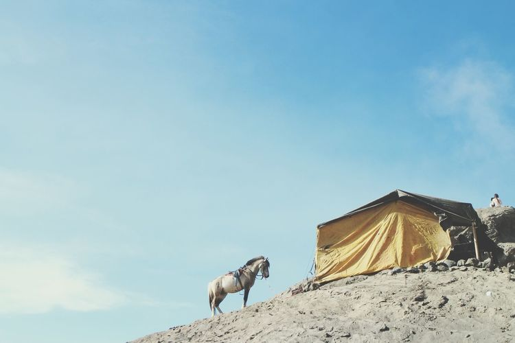Low Angle View Of Tent In The Countryside