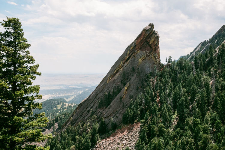 Sky Mountain Beauty In Nature Nature Plant Cloud - Sky Tree Tranquility Environment Scenics - Nature Tranquil Scene No People Landscape Land Growth Rock Travel Day Non-urban Scene Outdoors Mountain Peak Formation Flatirons