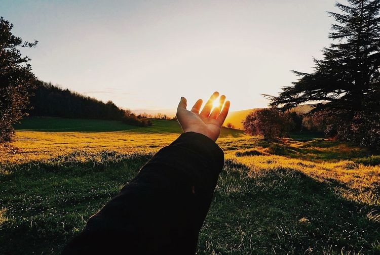 Sky Plant Tree Nature Human Hand Human Body Part Go Higher Unrecognizable Person Finger Leisure Activity Clear Sky Body Part Personal Perspective Sunlight Real People Hand Outdoors One Person Lifestyles Field Day Go Higher EyeEmNewHere Go Higher