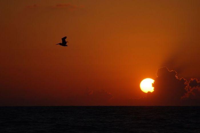 Sunset Skyporn EE_Daily: Orange Tuesday Captiva Island