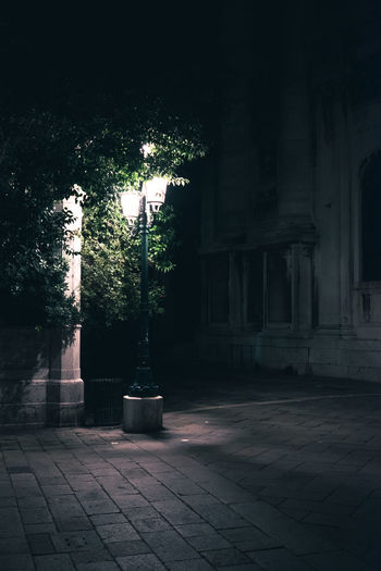 Architectural Column Architecture Building Building Exterior Built Structure City Courtyard  Flooring Footpath History Lighting Equipment Nature Night No People Outdoors Paving Stone Plant Potted Plant Street Street Light The Past Tiled Floor Tree Venice