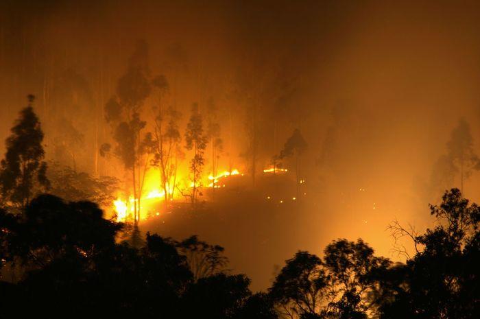 Fire at Ilaló Quito Ecuador Fire Night Nightphotography Longexposure Long Exposure