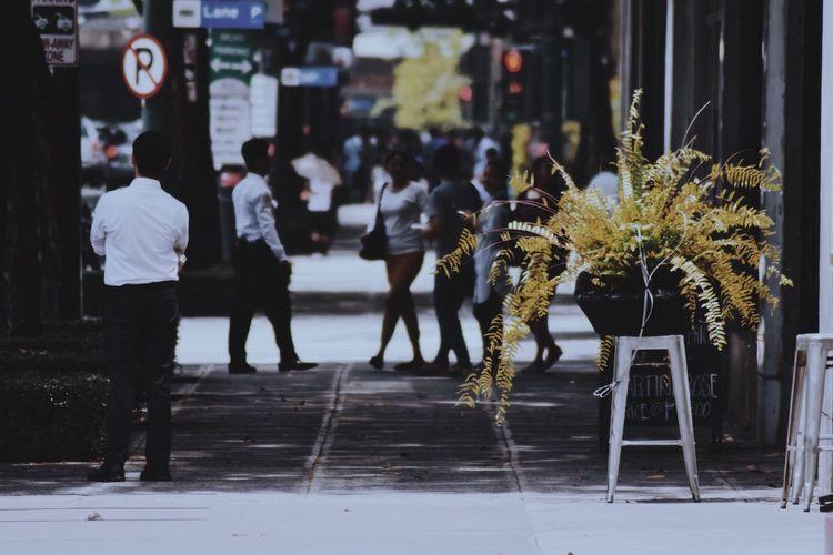 Street Real People Outdoors Walking Road Flower Sidewalk Day Full Length Men Women Building Exterior Nature One Person City People The Street Photographer - 2017 EyeEm Awards Nikon D3300 Nikon Tamron70_300mm Tamron Photography Iamnikon Neighborhood Map
