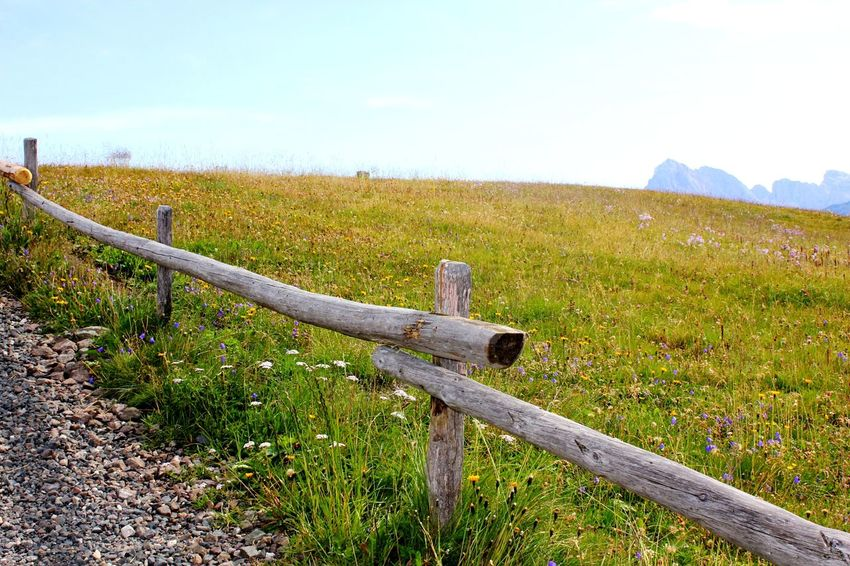 Grass No People Outdoors Field Day Rural Scene Nature Sky Travel Photography Travelling Dolomites, Italy Beauty In Nature Mountain