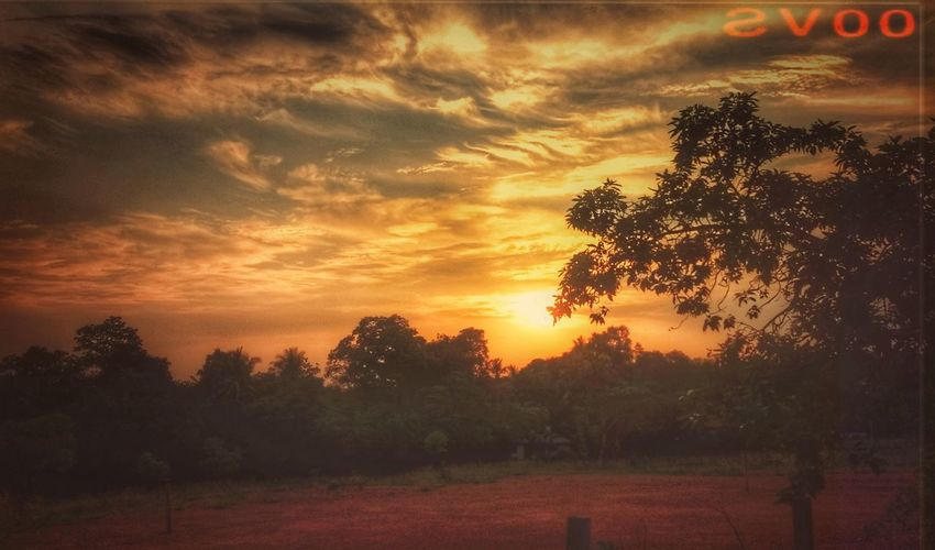 Sunny evening Sunset Cloud - Sky Beauty In Nature 👽👽 👽 Nature Art Is Everywhere Motion Vintage Scenics India