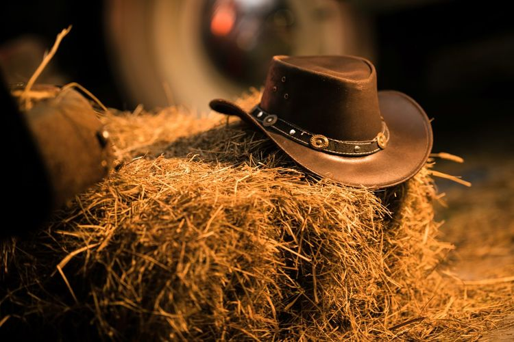 Leather Cowboy Hat on the Small Pile of Hay in the Old Barn. Western Wear and Wild West Concept. Agriculture Close-up Container Cowboy Hat Cup Day Farm Focus On Foreground Hay Indoors  No People Plant Preparation  Selective Focus Still Life Straw Sunlight Western Wear Wood - Material