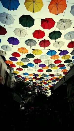 Colorful Pretty Umbrellas Antalya Enjoying Life