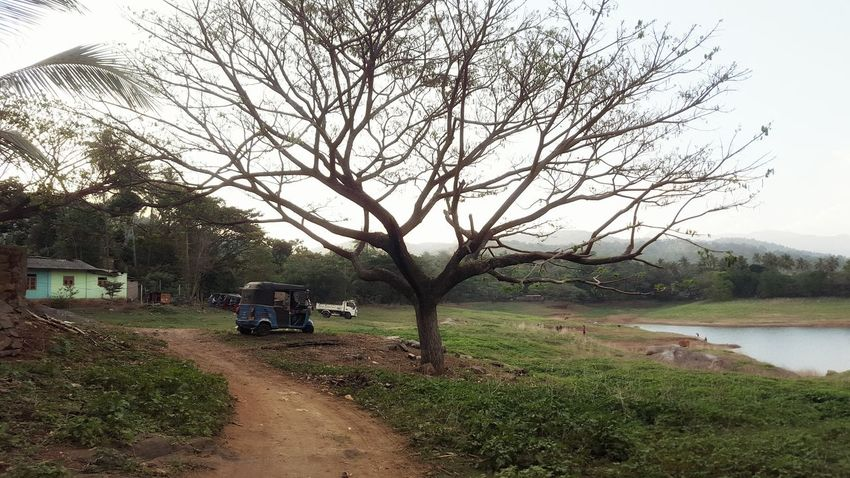 Hanging Out Check This Out That's Me Relaxing Hello World TukTuk SriLanka Holiday POV Jpl_photography Enjoying Life Naturephotography Click Click 📷📷📷 Mountain View Trees Beautiful Mountains Summer ☀ Beautiful Nature Beautiful Day Places I've Been Water Hot Look Today Check This Out Taking Photos