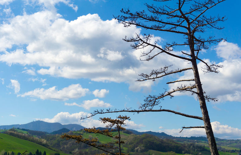 Beauty In Nature Blue Cloud - Sky Clouds And Sky Cloudy Day Cloudyday Country Countryside Day Grass Hill Hills Hilly Hilly Area Landscape Mountain Nature No People Outdoors Salsomaggiore Salsomaggiore Terme Scenics Sky Tranquility Tree