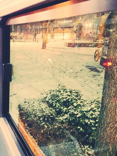 Through The Window In The Bus Snow Day ❄ Last Winter :)