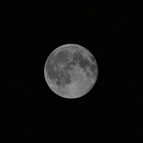 The Bluemoon is Amazing tonite. I'm a Novice but I'm learning! Nightphotography Moon Fullmoon Nightsky Cosmos Countryside