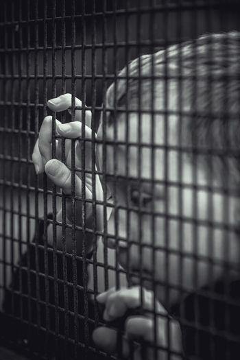 Close-up of girl hand holding metal fence