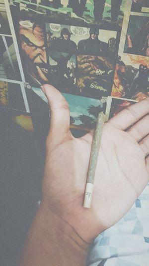 Weed Weed Life Smoke Joint Smoking  Maconha Cannabis Erva Thc
