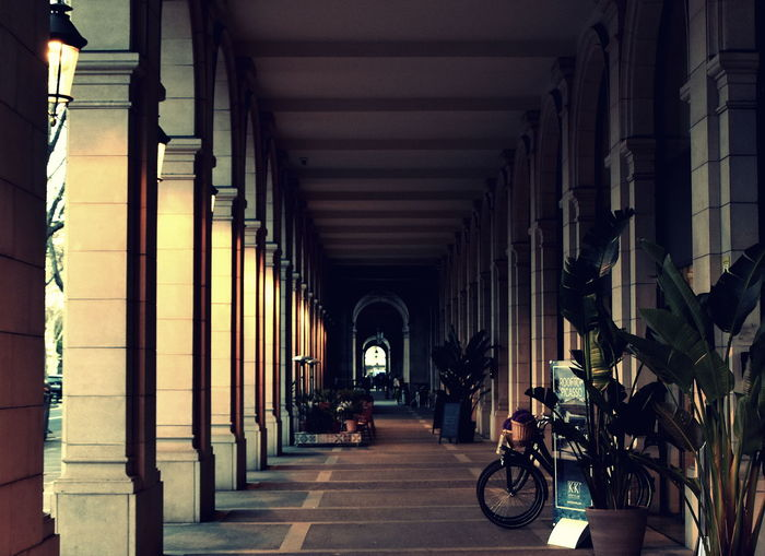 Arch Architectural Column Architecture Bicycle Built Structure Corridor Day Full Length In A Row Indoors  Men One Person People Real People The Way Forward Walking Women