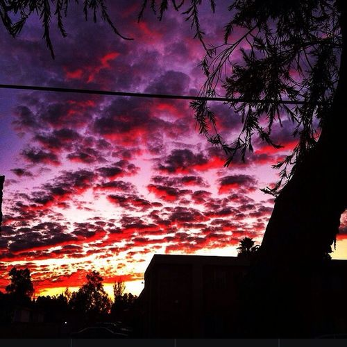 EyeEm Nature Lover Sunsets Sunset Silhouettes Clouds And Sky
