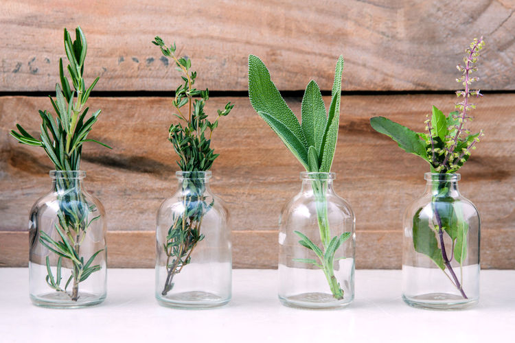 Close-Up Of Various Herbs In Glass Bottles On Table