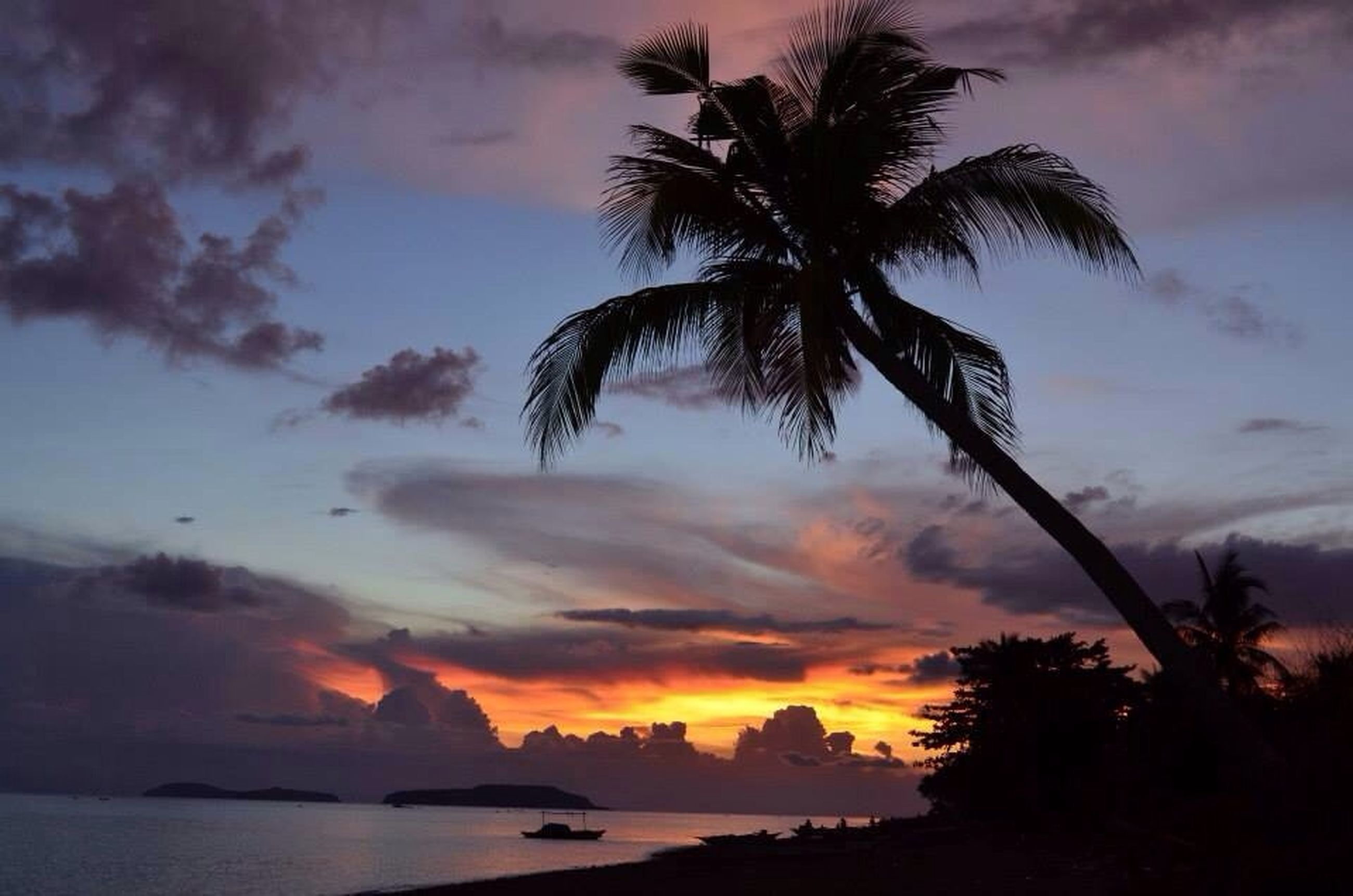 palm tree, sky, sunset, silhouette, scenics, tree, tranquil scene, tranquility, beauty in nature, sea, cloud - sky, water, nature, horizon over water, beach, idyllic, cloud, cloudy, dramatic sky, dusk
