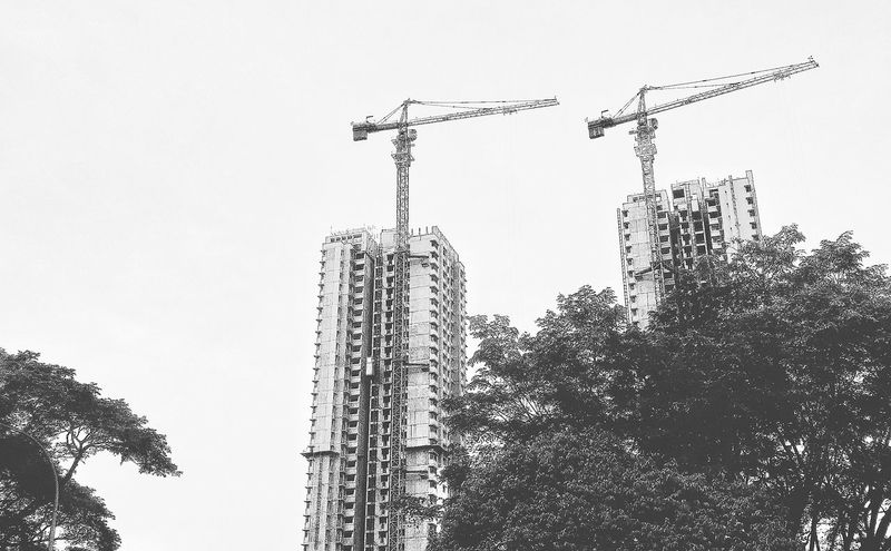 Building And Trees Tall Buildings Flats Buildings Architecture Design Urban Nature EyeEm Nature Lover Nature Blackandwhite Black And White Collection  Blackandwhite Photography EyeEm BlackandWhite Blacknwhiteworld Eyeemphotography Construction Cranes