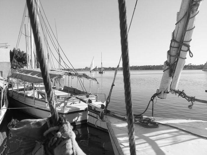 boats Cairo River Nile Nautical Vessel Sea Water Transportation Nature Outdoors Day Sailing Sailboat Sailing Ship